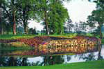 The K Club -Palmer Course, venue of the 2006 Ryder Cup. The course is an Arnold Palmer design that has earned its stripes by hosting numerous European Tour events, most recently the annual Smurfit European Open. This scenic parkland course is immaculately groomed and is set in one of the most peaceful settings in Ireland.
